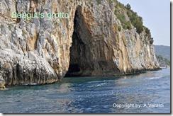 Seagulls grotto