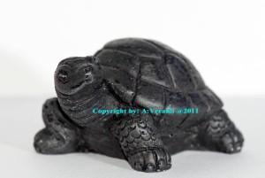Tartaruga di pietra lavica